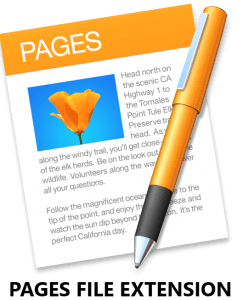 file extension pages